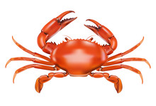 Red Crab Isolated On White Bac...