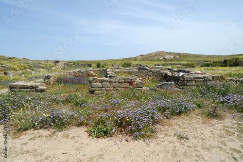 Fotografie, Obraz  La Maison au Diadumène de la cité antique de Délos en Grèce