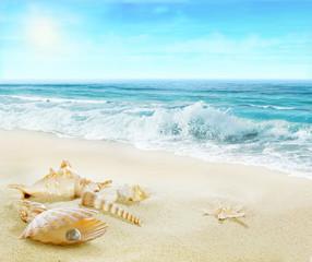 Panel Szklany Optyczne powiększenie Sandy beach with shells and pearl.