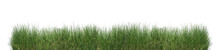 Green Grass Isolated.