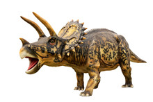 Dinosaur Triceratops And Monster Model Isolated White Background