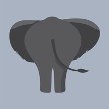 Elephant Bottom Vector Illustr...