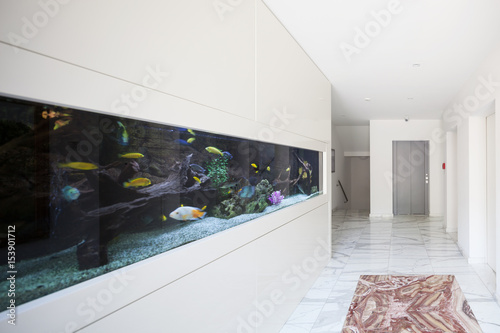 Photo Modern palace, corridor with aquarium
