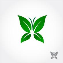 Green Leaf Butterfly
