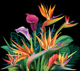 FototapetaFloral bouquet with Strelitzia flowers