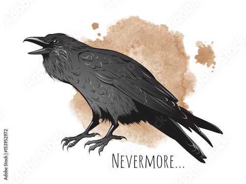 Fotografía Hand drawn raven on sepia background vector illustration