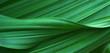 Leinwandbild Motiv Green leaves for background