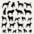 Silhouettes of dogs on a light gray background
