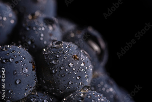 Tuinposter Macrofotografie Dark bunch of grape in low light on black isolated background , macro shot , water drops