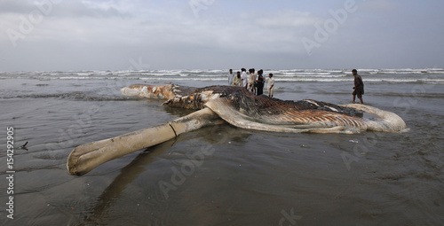 Residents and officials stand next to the carcass of an