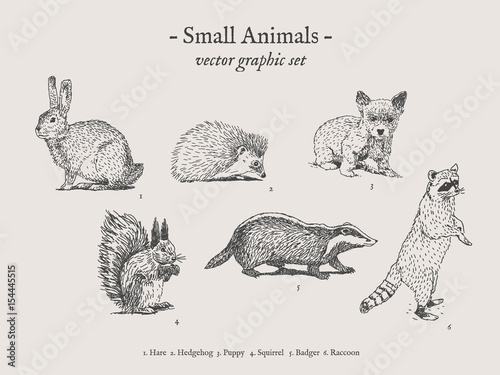 Obraz na plátne Small animals drawings set on grey background with hare, hedgehog, puppy, squirr