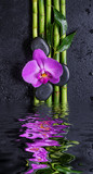 Fototapeta Kwiaty - Stones, orchid flower and bamboo reflected in a water