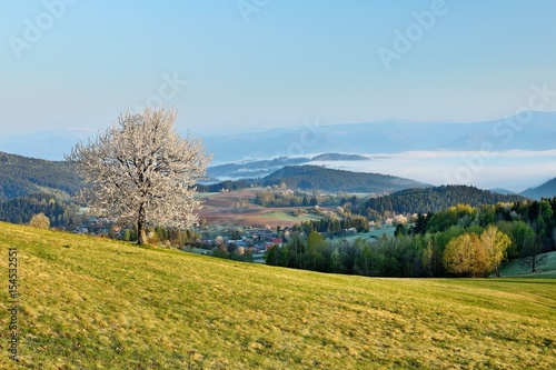 Foto op Aluminium Pool Spring meadows and fields landscape in Slovakia. Low Tatras panorama with snowy peaks. Blooming cherry trees. Cloudly inversion after the rain.