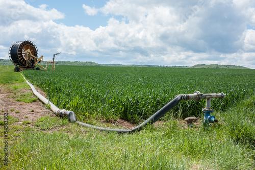 Valokuva  tuyau d'arrosage dans un champs