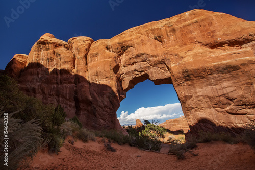 Fotobehang Natuur Park Pine Tree arch in Arches National Park in Utah, USA