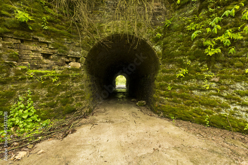 Tunnel To Woods / An old tunnel leading to woods on the other side.