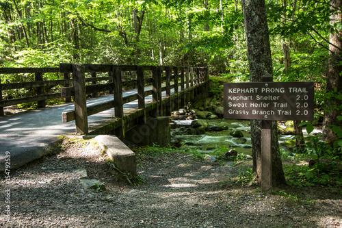 Photographie Hiking Trail In The Great Smoky Mountains