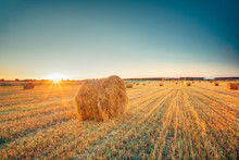 Rural Landscape Field Meadow With Hay Bales After Harvest In Sunny Evening At Sunset