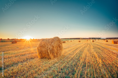 Obraz Rural Landscape Field Meadow With Hay Bales After Harvest In Sunny Evening At Sunset - fototapety do salonu