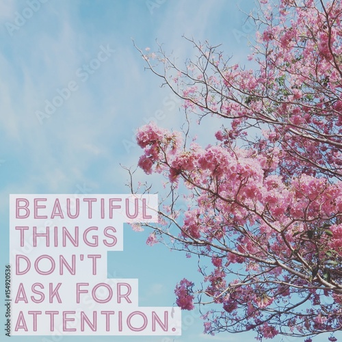 Inspirational motivational quote beautiful things don't ask for attention on pink flower with blue sky Wallpaper Mural