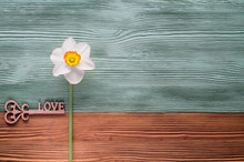 One White Daffodil And Wooden ...