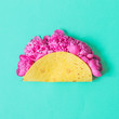 Leinwanddruck Bild - the concept of street food: peonies in a cheese tortilla on blue background