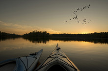 Kayaks At Sunset With Geese Fl...