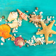 Starfish, shells, and pebbles forming frame for copyspace