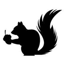 Cute Squirrel Eats Nut Nature Wildlife Image Vector Illustration