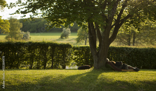 Fototapeta amoureux au repos sous un arbre obraz na płótnie