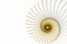 Abstract Golden Spiral On A White Background