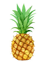 Pineapple, Isolated On White B...