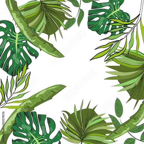 tropikalna-recznie-rysowane-egzotyczne-tlo-zbiory-z-lisci