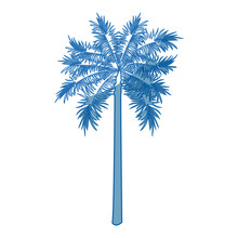 Palm Tree Trunk Leaves Botanical Tropical Isolated Vector Illustration