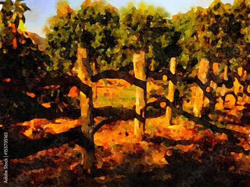 Aluminium Prints Bonsai California Avacado Farm
