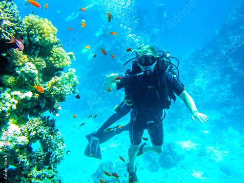 Fototapeta Живописное морское дно. Дайвинг в Египте