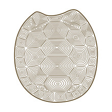 Carapace Turtle Zen Tangle. Coloring Book With Shell Tortoise.