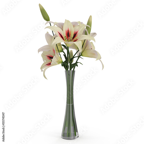 White Lily Vase On White 3d Illustration Buy This Stock