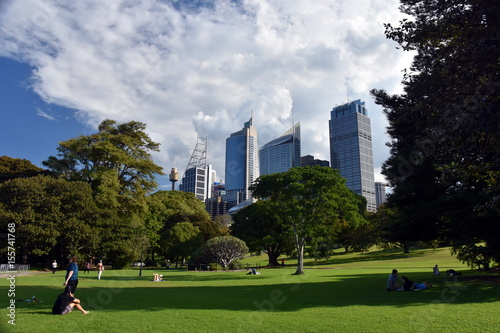 obraz PCV Sydney, Australia - Apr 23, 2017. View of Sydney's skyline from Royal Botanic Garden.