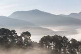 Halna sceniczna mgiełka mgłowa w ranku podczas gdy wschód słońca - 155827588