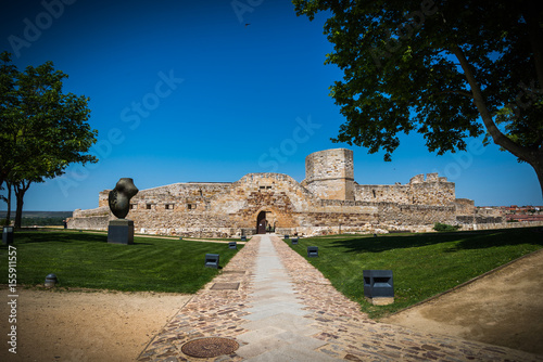 Castillo, ruina fortaleza en Zamora España Poster