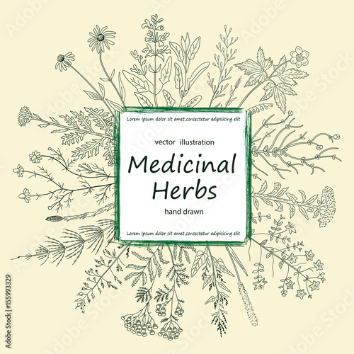 Photo  Card of a medicinal herbs and flowers.