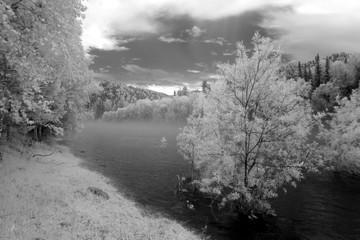 Fototapeta Czarno-Biały Fog at Katun river, Altai State Natural Biospheric Reserve, Russia.