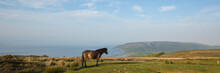 Exmoor National Park Panoramic...