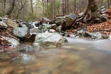 Mesa Potamos Creek In Cyprus Forest