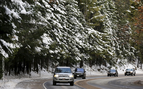 Cars pass by trees laden with snow along Hwy 50 on the west side of