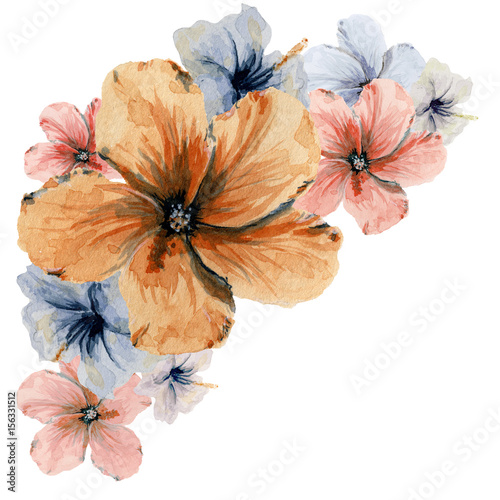 kwiaty-malowane-akwarela