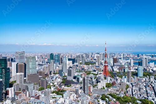 Fototapety, obrazy: 東京の都市風景