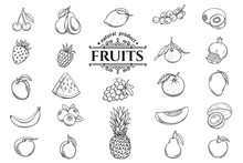 Vector Hand Drawn Fruits Icons Set