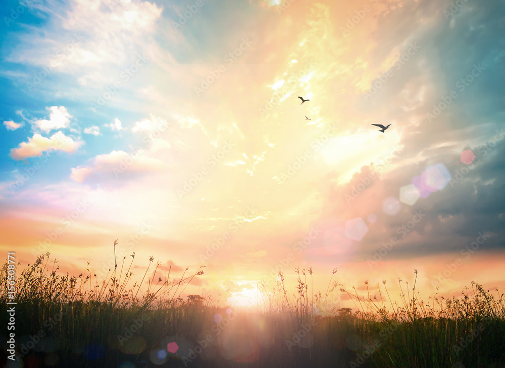 Happy thanksgiving day concept: Abstract meadow autumn sunrise background
